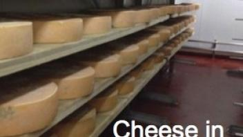 Cheese in agin room